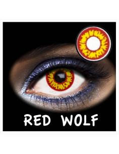 FANTASIA 1 DAY RED WOLF 2PK
