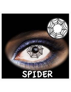 FANTASIA 1 DAY SPIDER 2PK